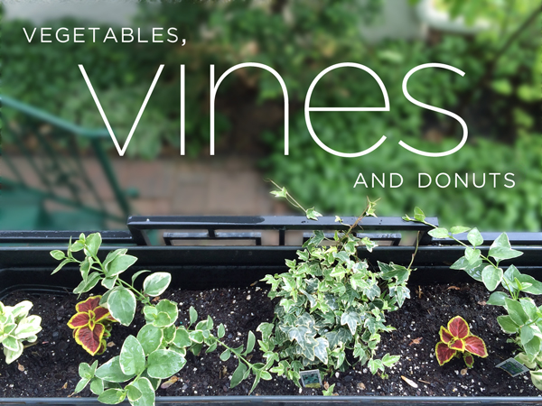 Vegetables, Vines and Donuts | Rather Square