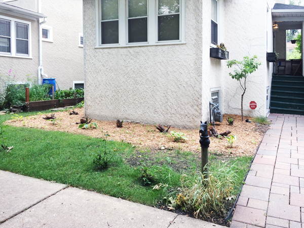 Front Yard Landscaping | Rather Square