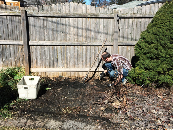 Clearing a Space for our Raised Garden Bed